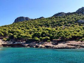 řecko les háj